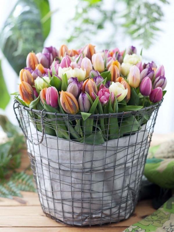 drótkosaras tulipán