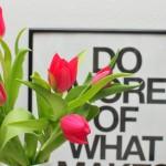 Tulipánnal kirúzsozva
