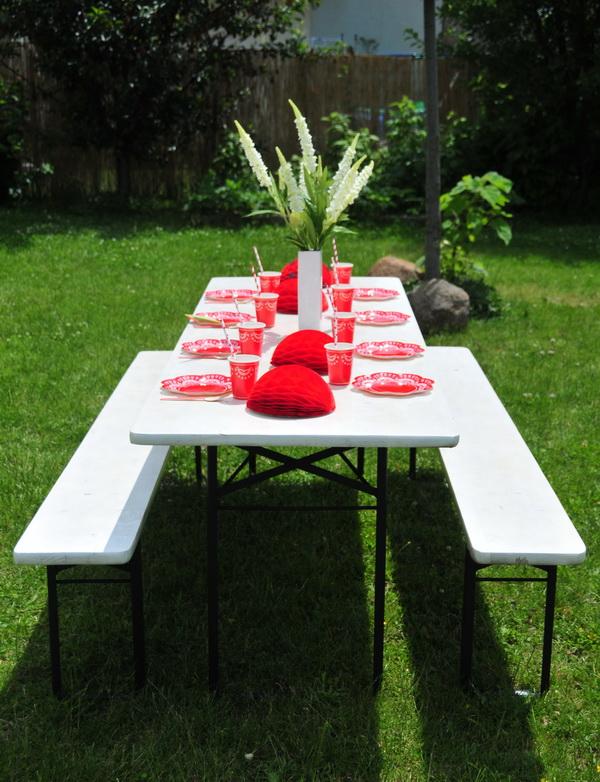 Piros fehér kerti party  (12)