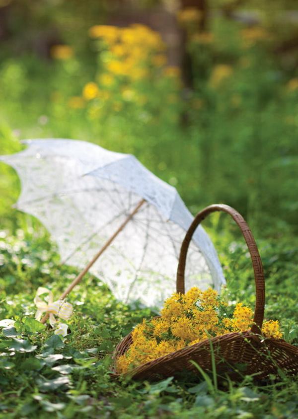 nyári romantikus piknik (2)
