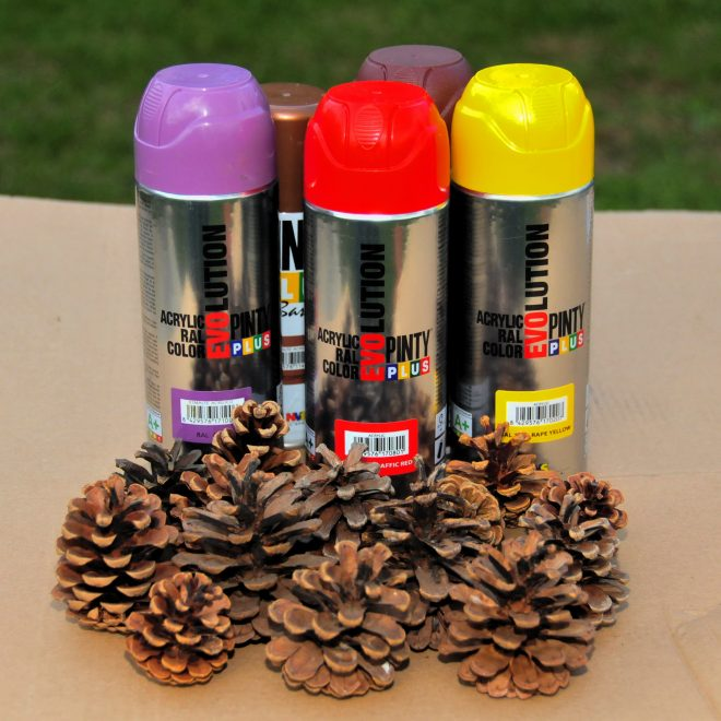 Pinty-Plus-Evolution-spray-festék-tobozon-