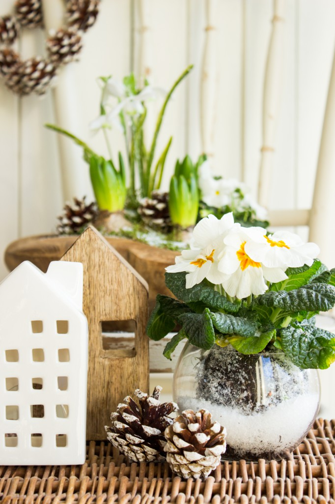 tavaszi-hagymas-virag-dekoracio-4