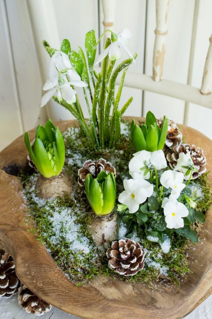 tavaszi-hagymas-virag-dekoracio-5