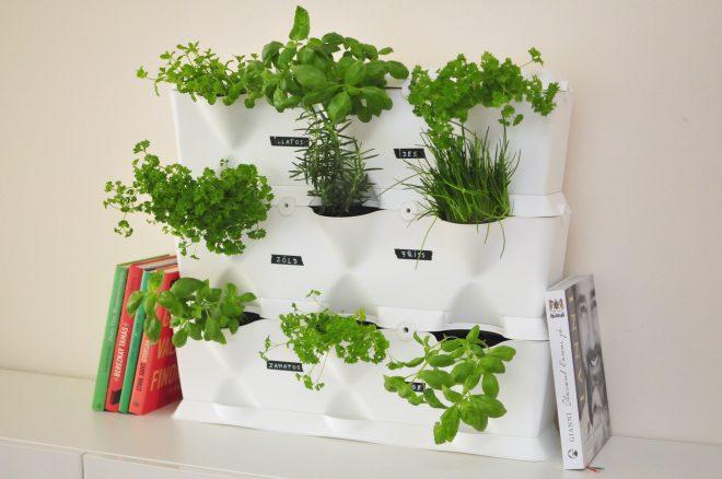 Minigarden Vertical fűszerkert Dekorella Blog