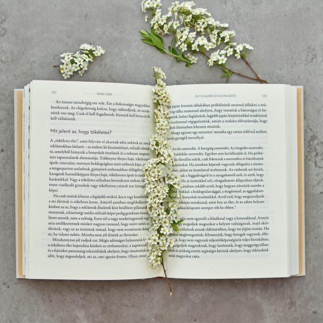Wabi Sabi könyv Libri