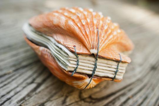 kagyló borítású könyv